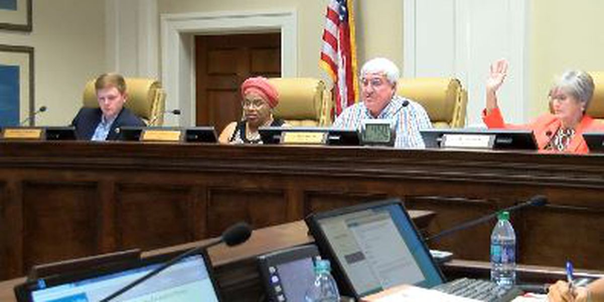 Hattiesburg City Council says proposed budget is a win-win