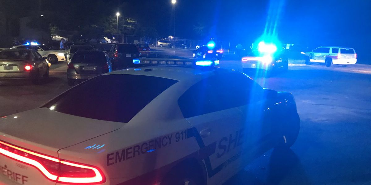 Hattiesburg police respond to shots fired behind business
