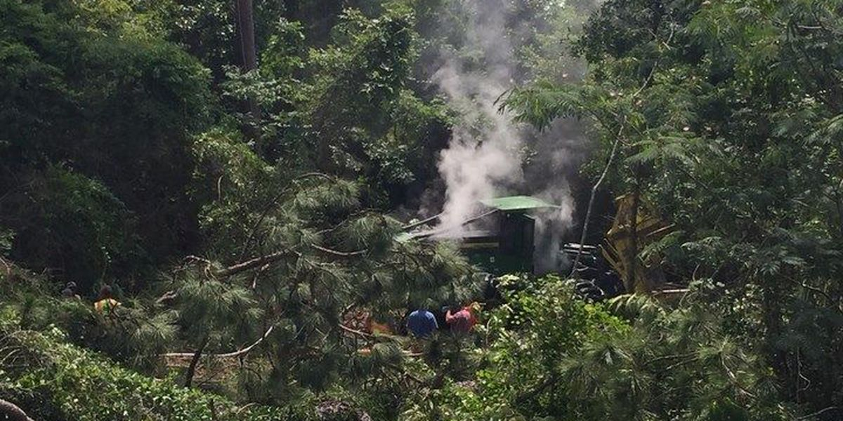 Forestry equipment overturns, catches fire off I-59