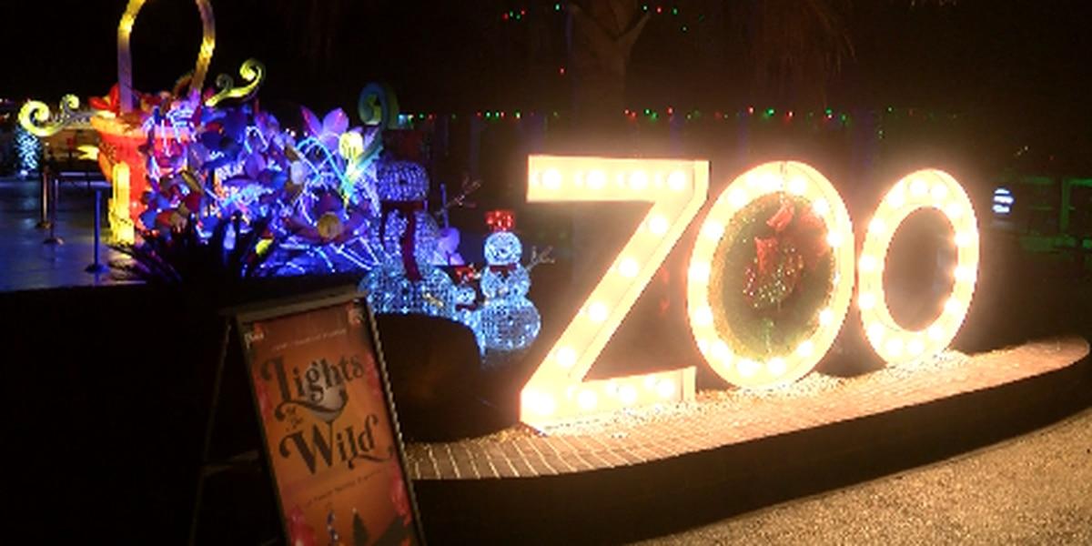 Lights of the Wild kicks off at Hattiesburg Zoo
