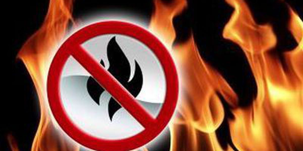 Gov. Tate Reeves signs statewide burn ban amid COVID-19 crisis