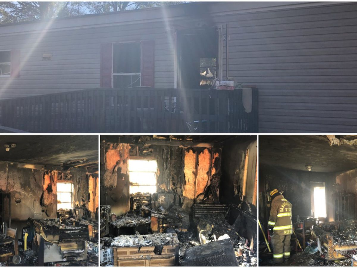Sandersville police officer saves 3 cats from mobile home fire