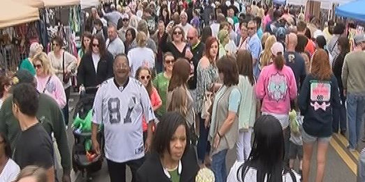 Thousands attend annual HUBFEST event