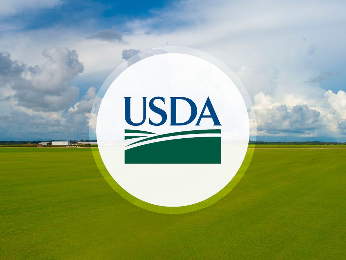 USDA awarding grants to help rural Mississippi communities