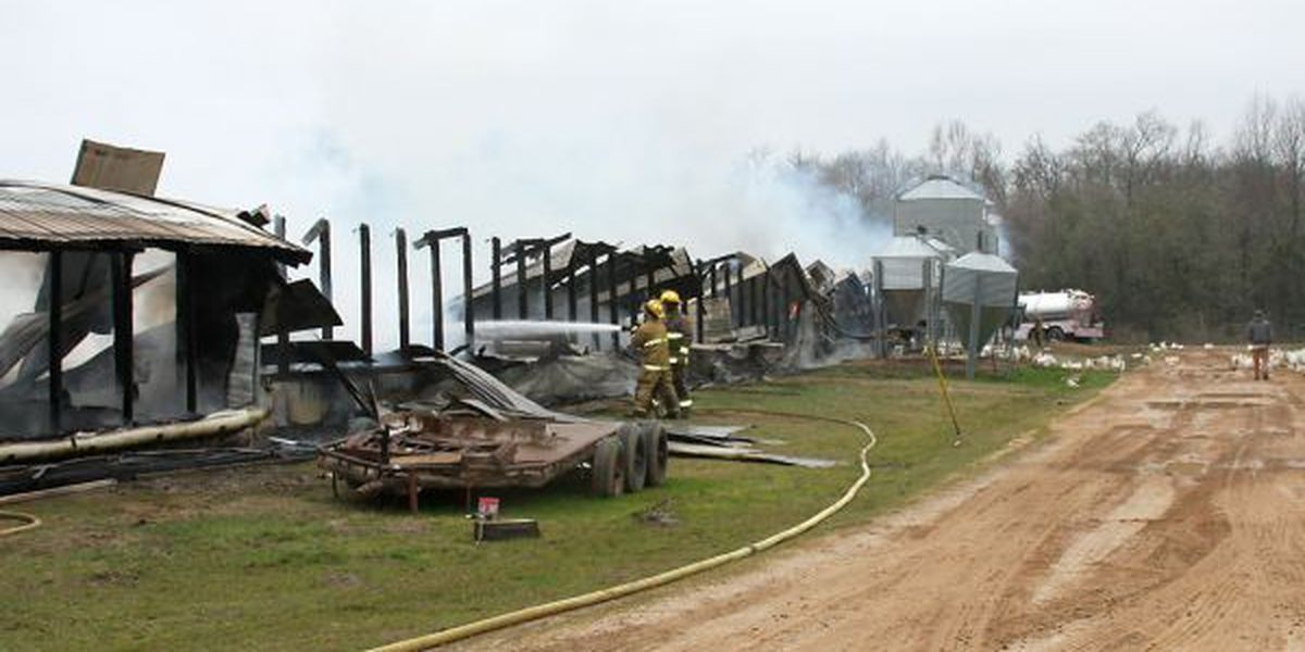 Jones County poultry farmer loses layer houses in fire