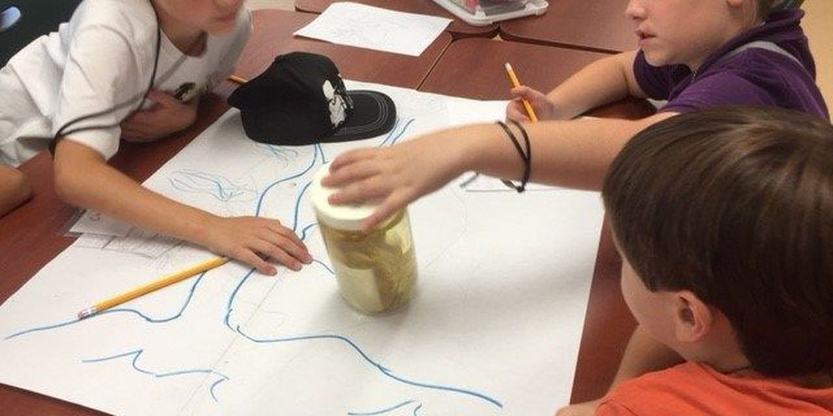 Southern Miss Lake Thoreau Center to host summer camps for kids