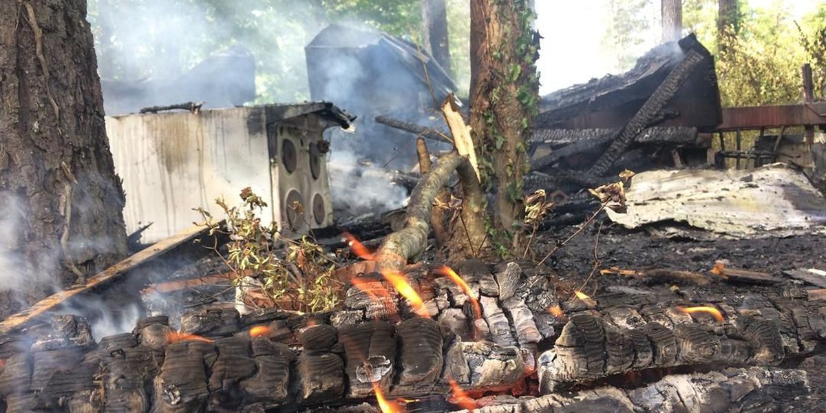 Fire destroys Forrest County mobile home