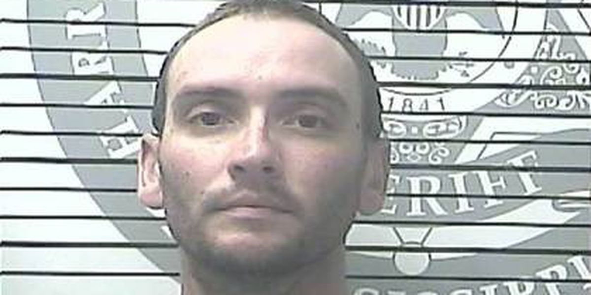 Gulfport man gets 40 years for making sexual videos of two young girls