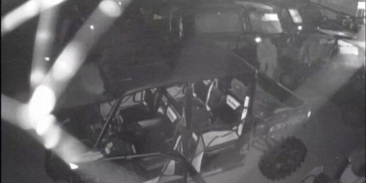VIDEO: Thief steals motorcycle from Pro Flow in Laurel