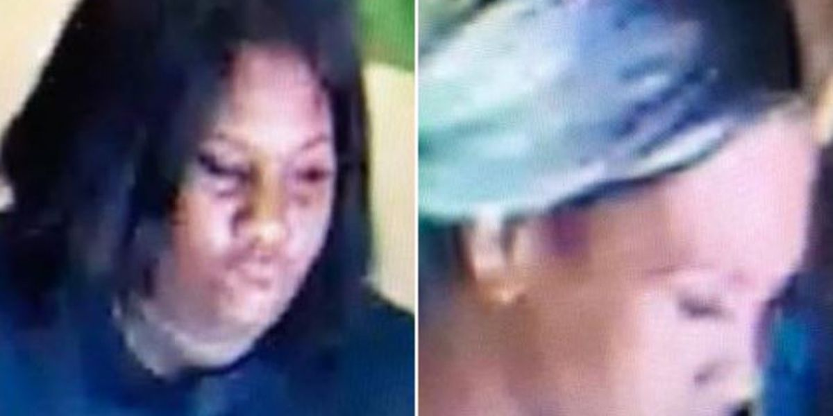 Ellisville PD: Suspects wanted for questioning in connection to shoplifting