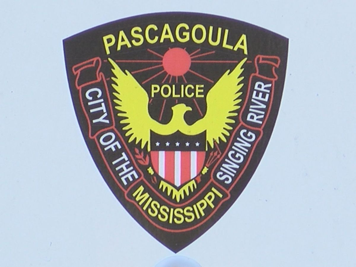 Authorities, family describe situation leading to AMBER Alert and recovery of Pascagoula boys