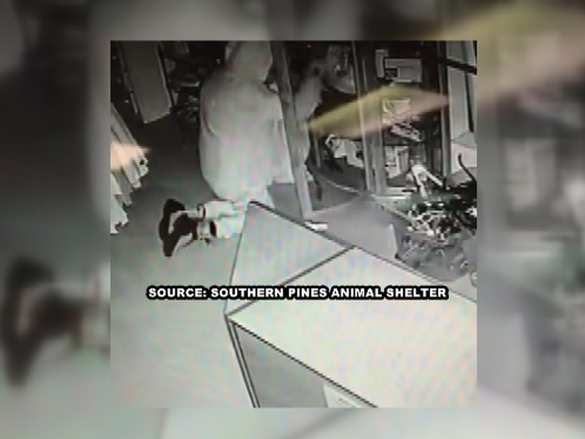 Thief steals from Southern Pines Animal Shelter's thrift store