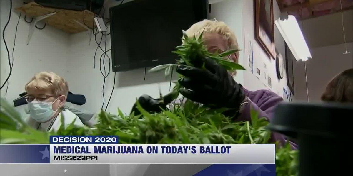 Medical marijuana on today's ballot