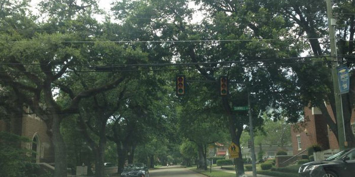 Power restored in Laurel for 6,429 Mississippi Power customers