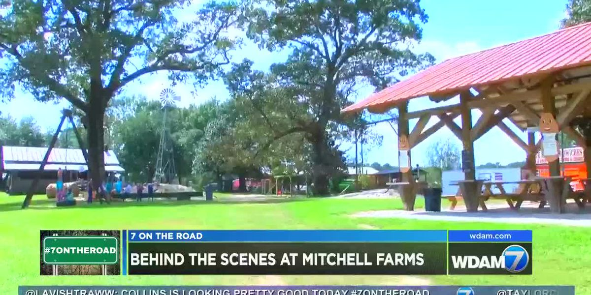 7 On the Road: Mitchell Farms