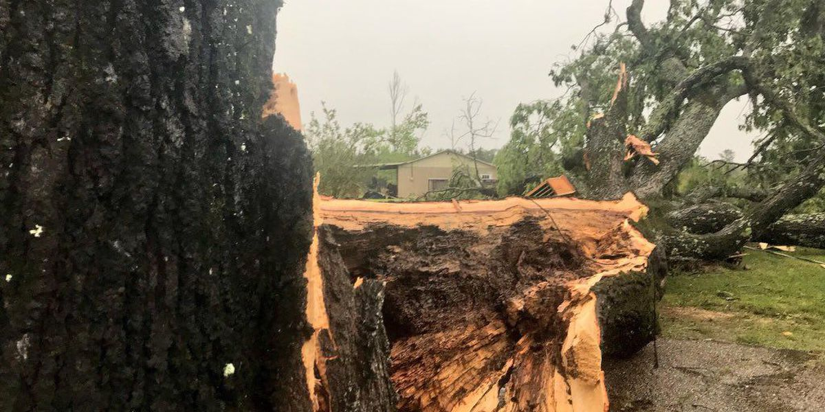Storm damages power line, truck in Lamar County