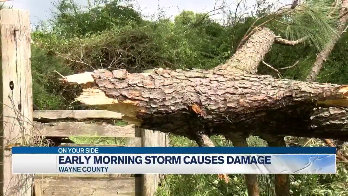 Early morning storms cause damage in Wayne County