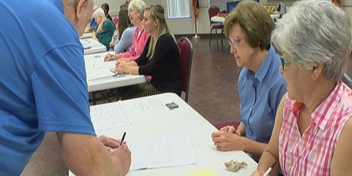 Voter turnout steady in Jones County
