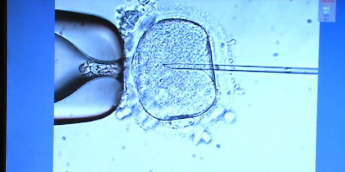 Bill would require health insurance to cover infertility treatment in MS