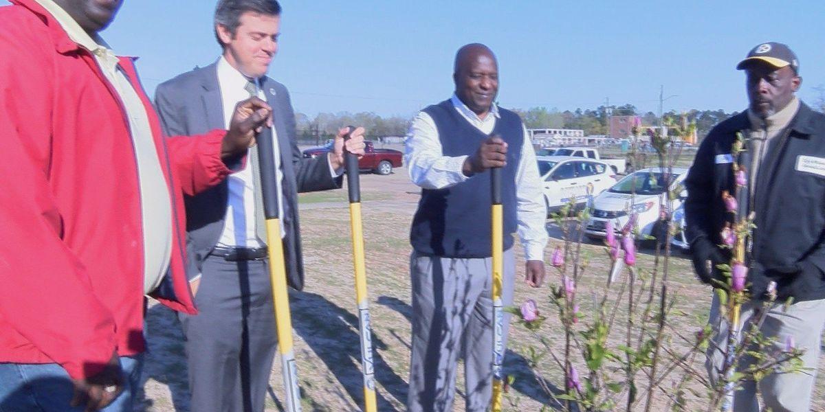 Hattiesburg plants 50th tree to restore Duncan Lake Park after tornado