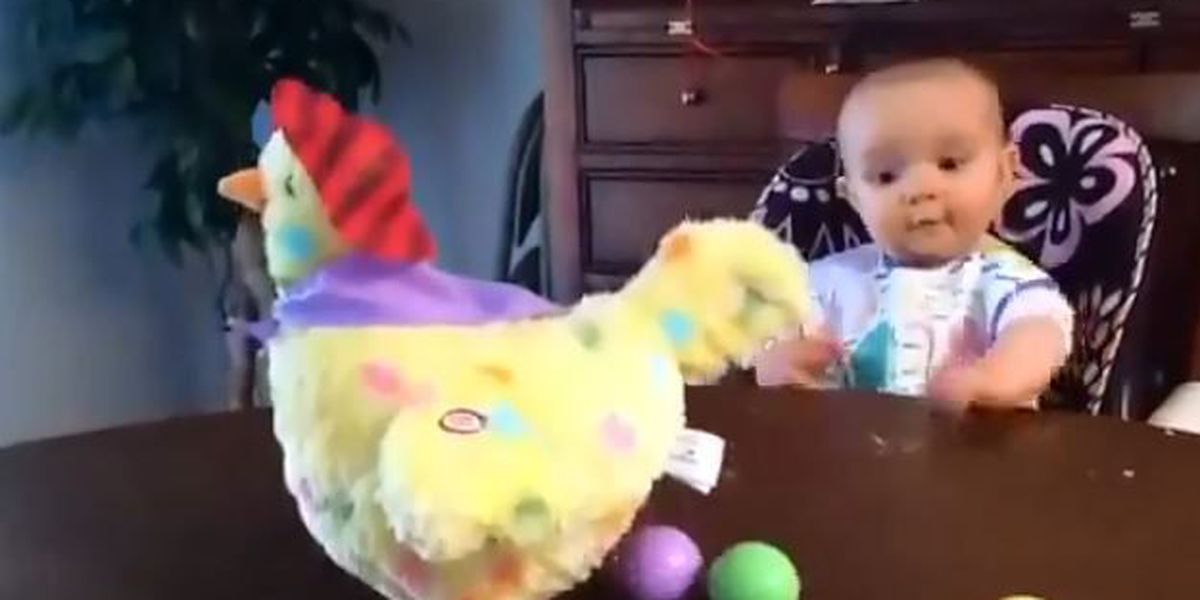 VIDEO: Baby reacts to toy chicken that lays eggs