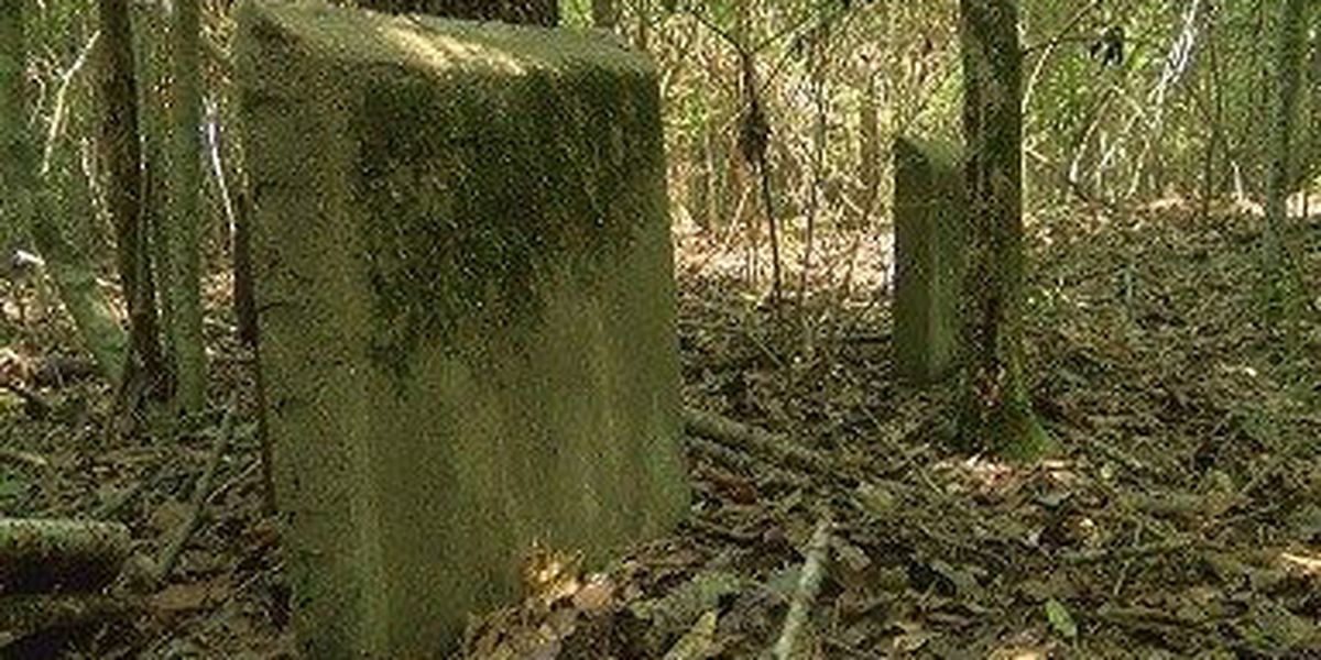 Richton family wants neglected cemetery maintained properly