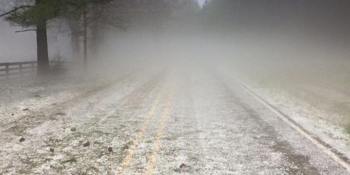 SLIDESHOW: Hail in the Pine Belt