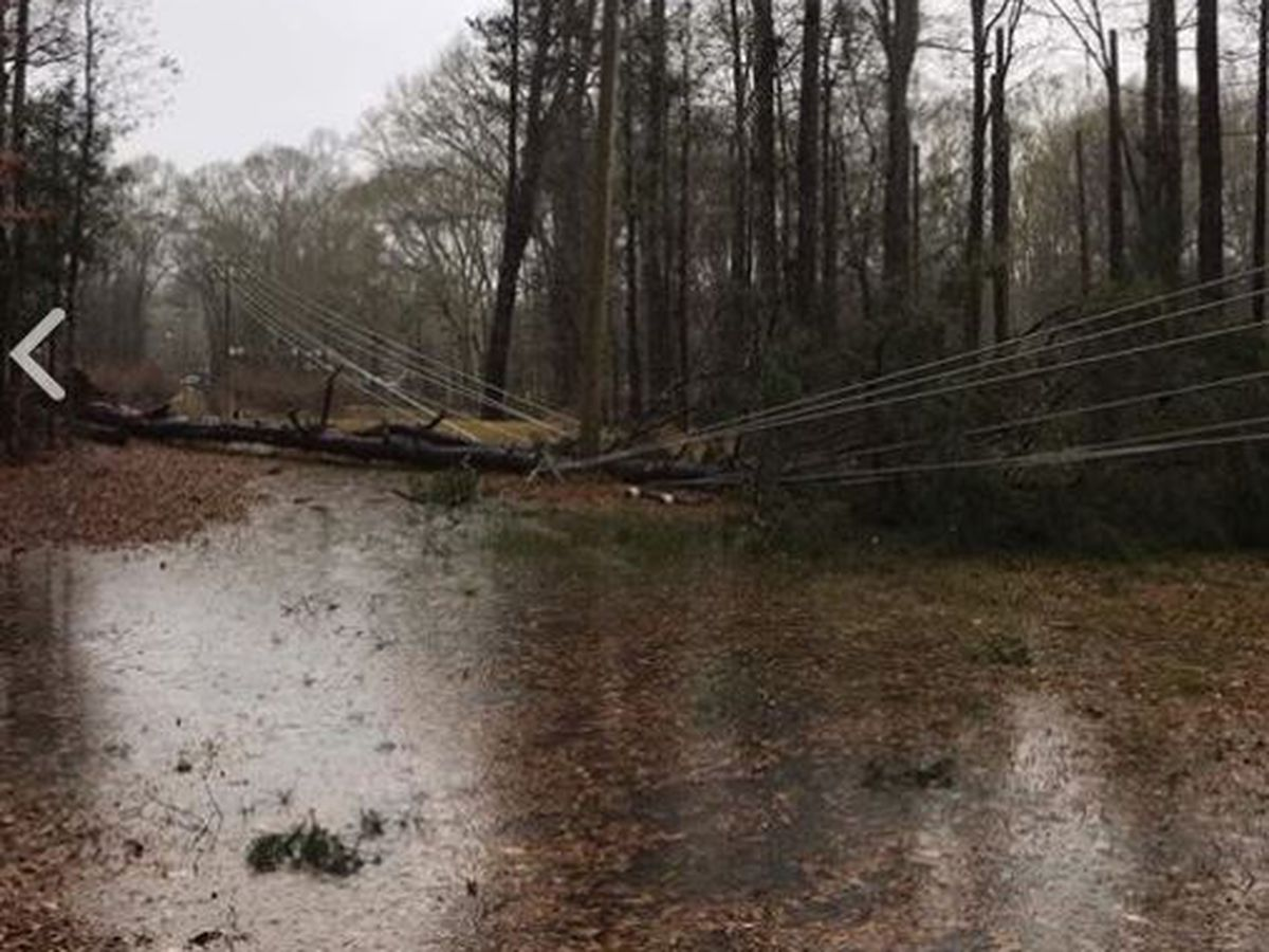 1,500 Southern Pine customers lose power