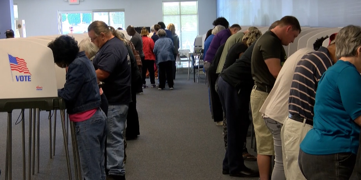 Mississippi House races head to runoff