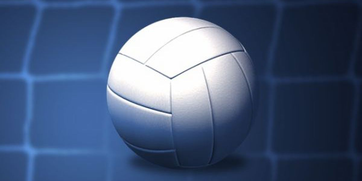 USM volleyball adds 3 players
