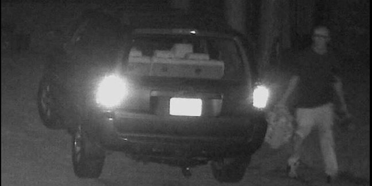 Hattiesburg police searching for grand larceny suspect
