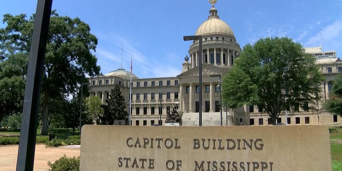 Mississippi lawmakers hear from doctors on what they'd like to see in next Medicaid tech bill