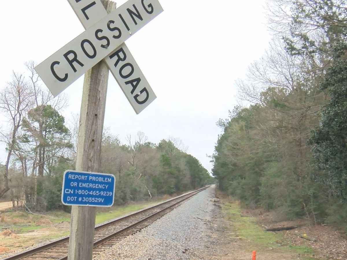 Perry County man killed by train