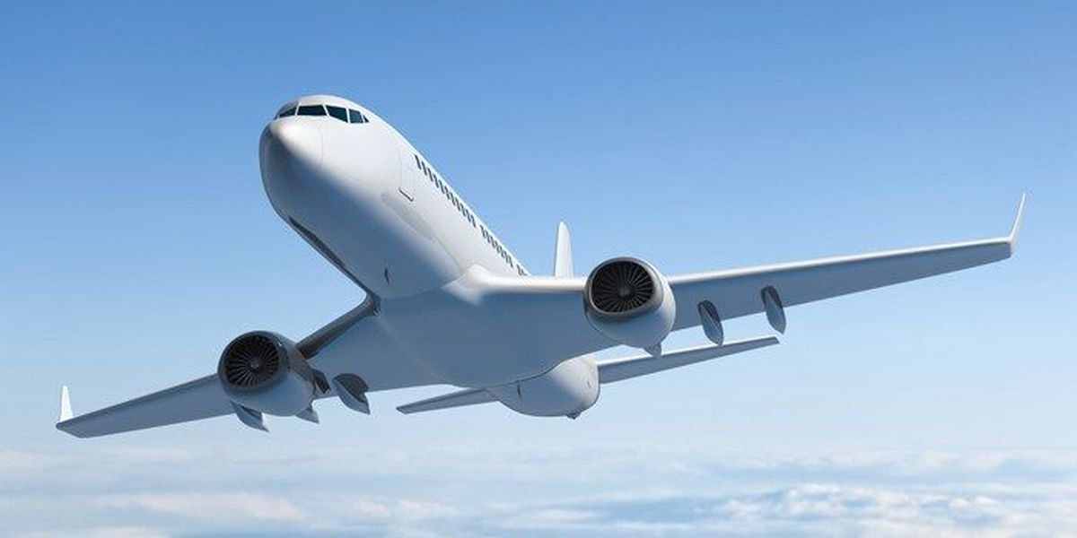 Passengers off quarantined American flight in Nashville; Huckabee jokes it's 'Russians'