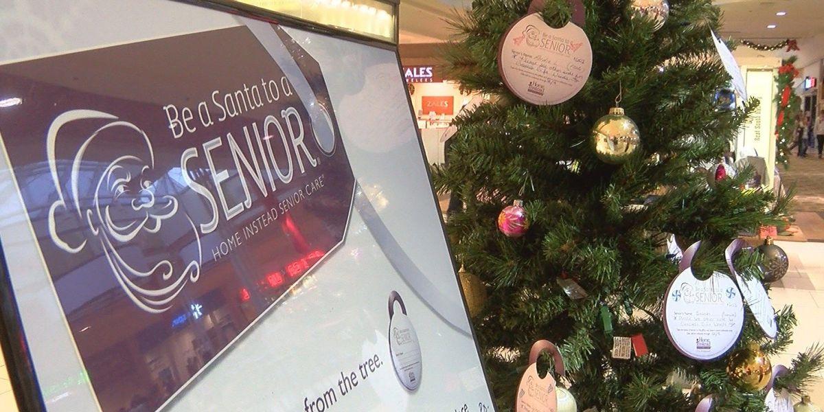 'Be a Santa to a Senior' deadline is Dec. 9