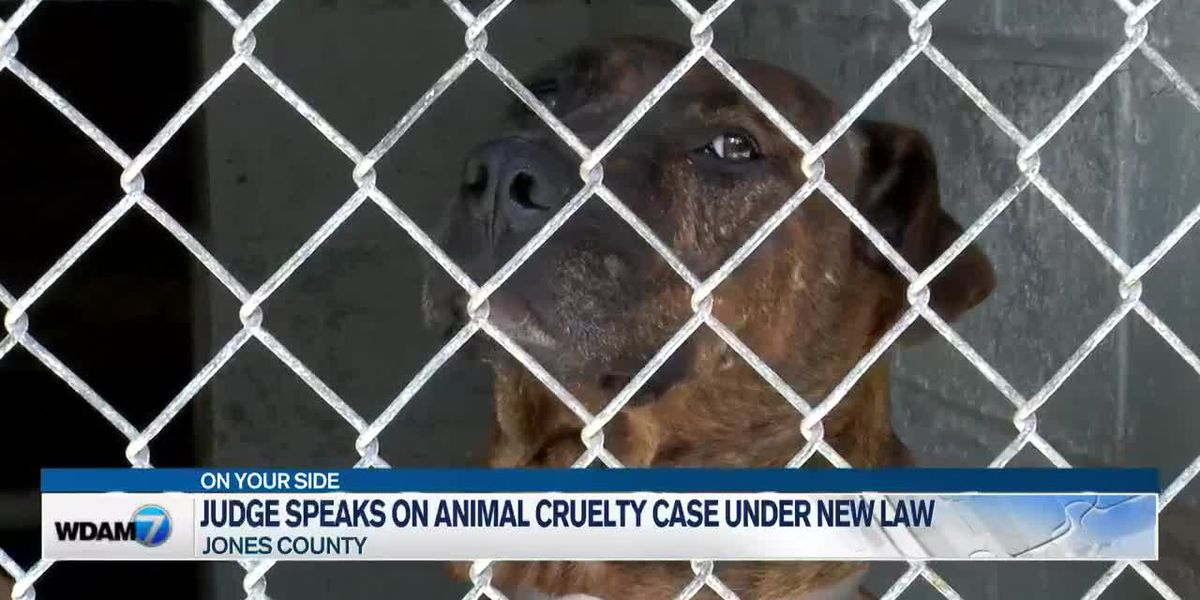 Jones County judge speaks on animal cruelty case under new law
