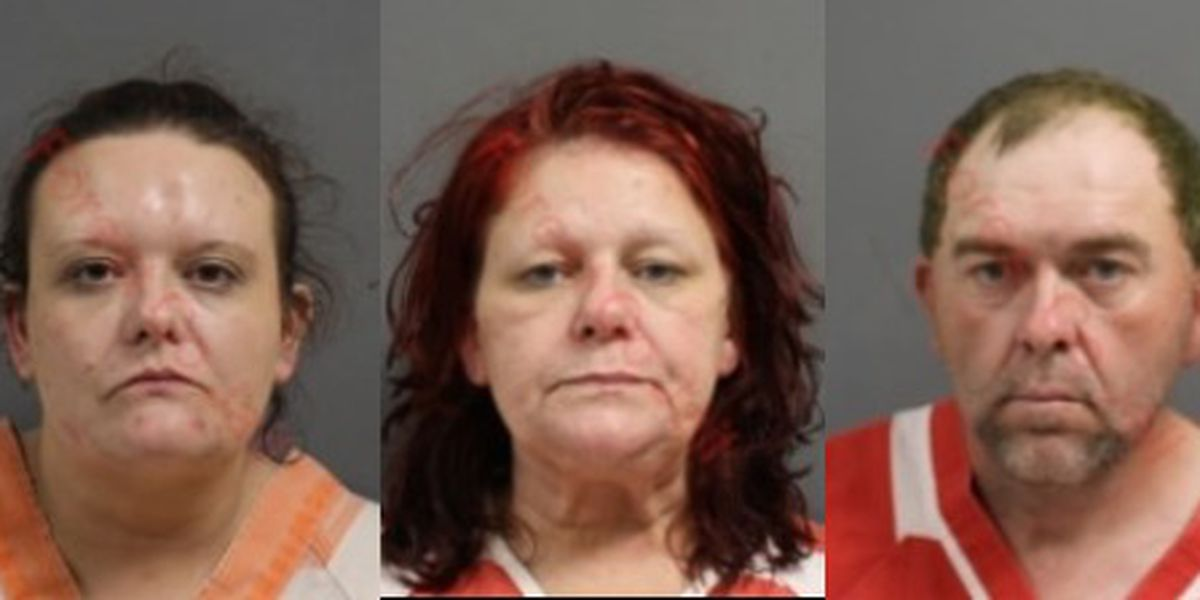 Three charged in Forrest County burglary