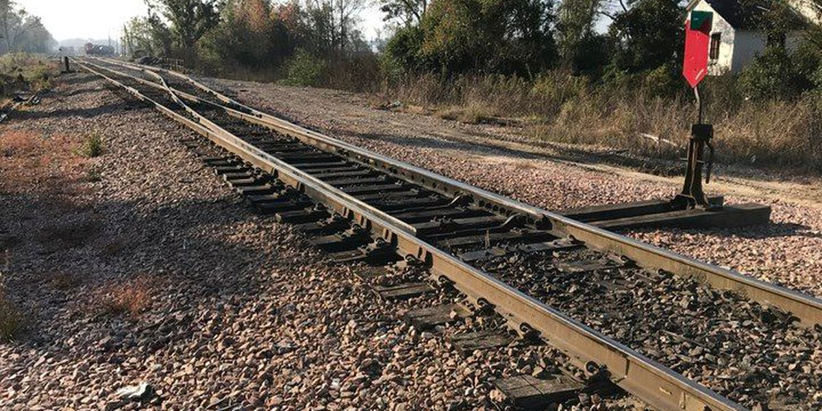 Man struck by train in Hattiesburg