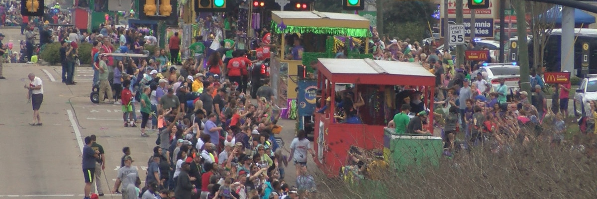 7th Annual Caerus Parade rolls down Hardy Street