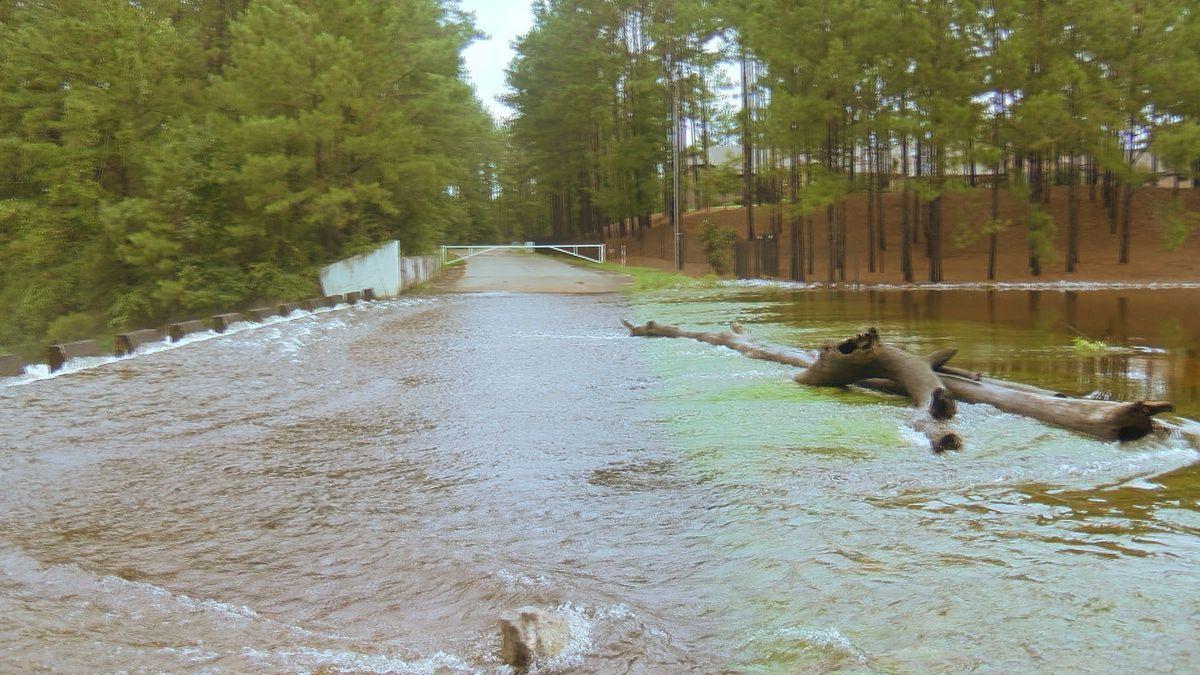 Barry leaves behind minimal damage in Pine Belt