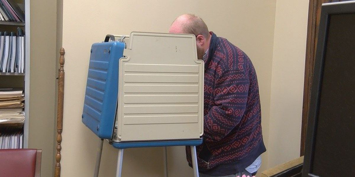 Voter turnout steady in Forrest County