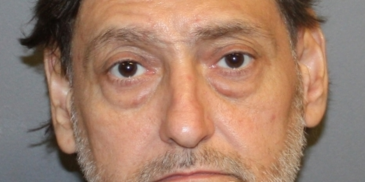 Brother charged in retired teacher's murder out of jail