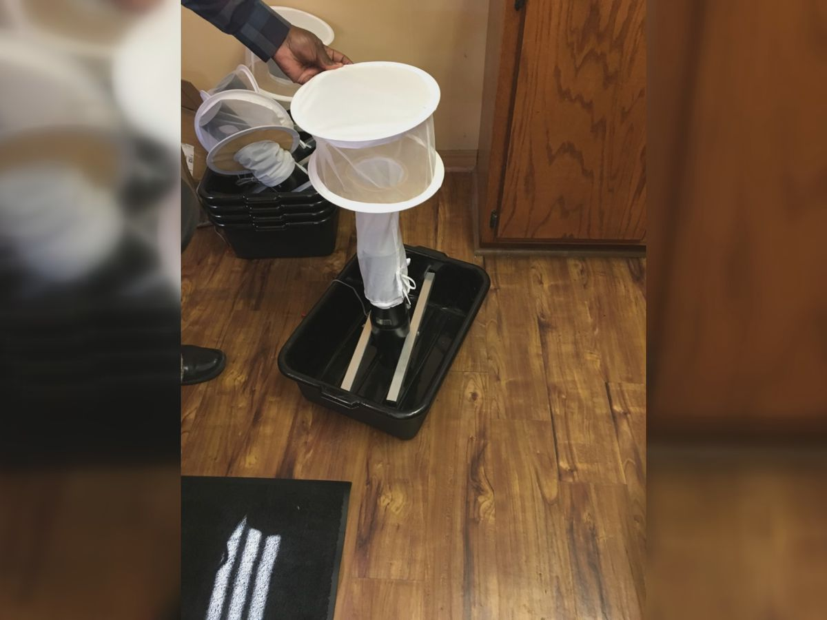 Hattiesburg places mosquito traps to test for diseases