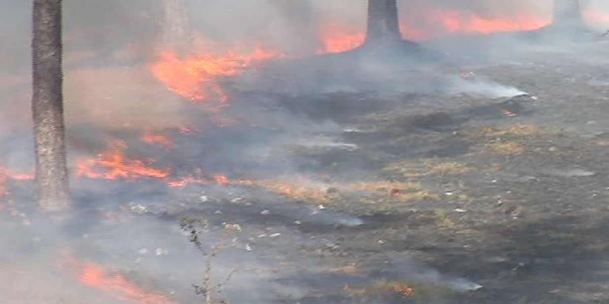 Lamar volunteer fire departments to receive wildfire kits