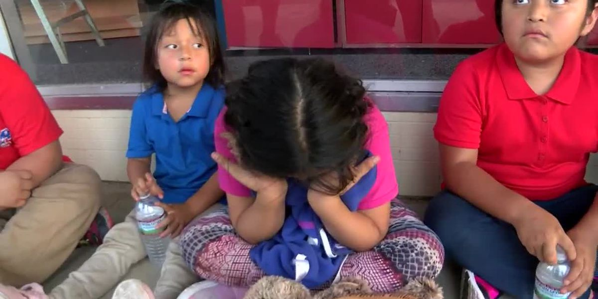 Children cry out for their parents as US immigration officials make hundreds of arrests
