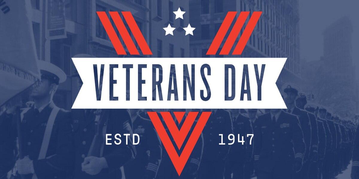 Veterans Day events around the Pine Belt area