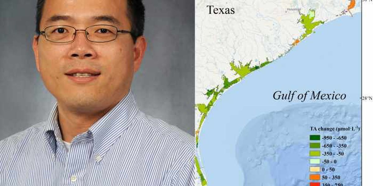 University study uncovers potential threat to Gulf shellfish
