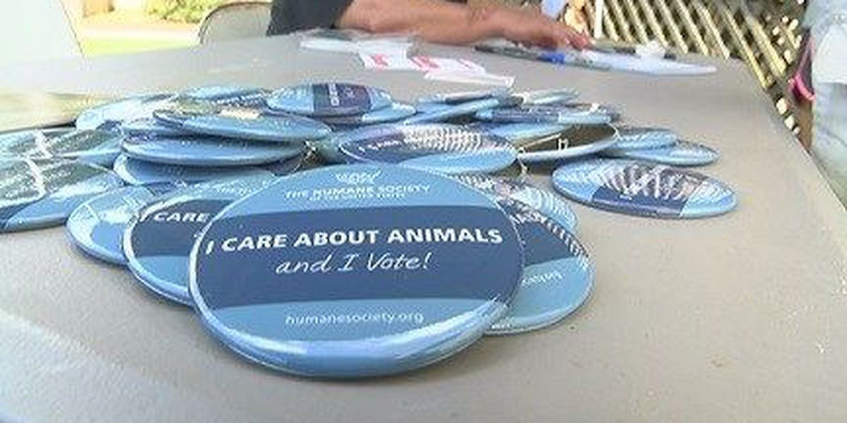 Local pet shelter hosts Animal Advocacy Day