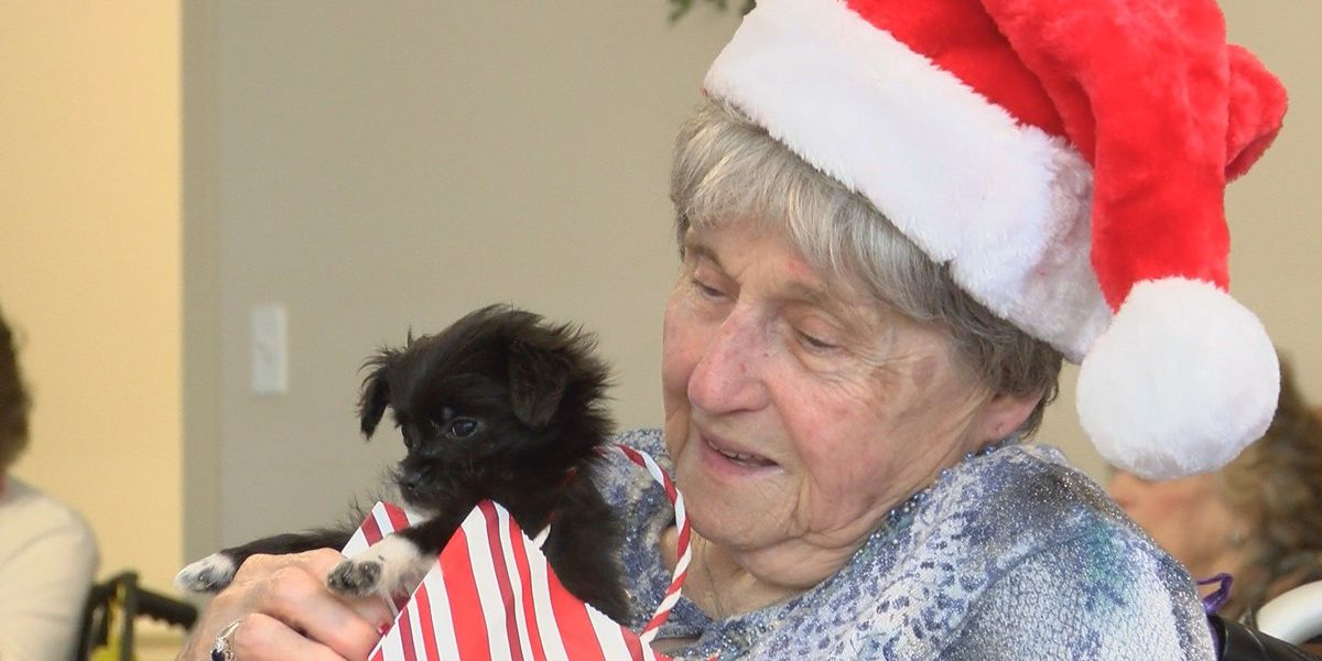 Love at First Sight Adoption Center takes puppies to visit Petal care center's residents