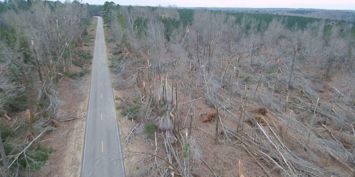 Drone footage shows EF-4 tornado's path of destruction in Lee Co., Alabama